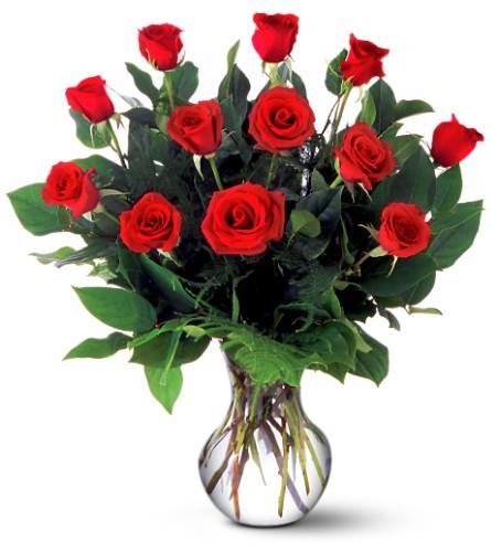 Ultimate Elegance Premium Long Stem Red Roses