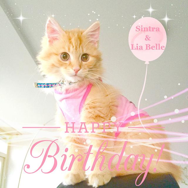 Wishing you a joyful and happy birthday